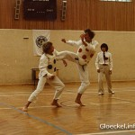Walter Egon Glöckel zum Landesmeistertitel in Tae-Kwon-Do 1981